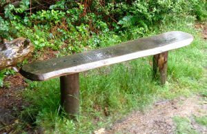 The Crying Bench